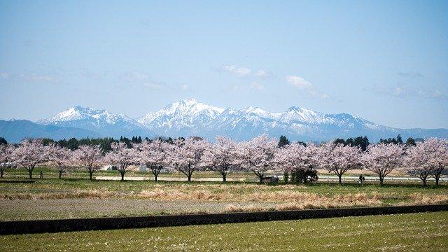 四季美しい日本の山