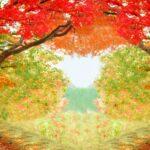 秋の色が変わる景色